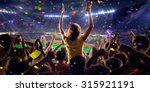 fans on stadium game  panorama... | Shutterstock . vector #315921191