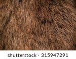 Brown Wolf Fox Hair  Fur....