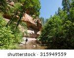 man trekking through oak creek... | Shutterstock . vector #315949559