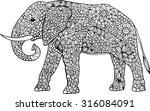 hand drawn doodle outline... | Shutterstock .eps vector #316084091