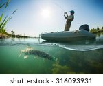 fisherman and pike  underwater... | Shutterstock . vector #316093931