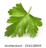 parsley herb isolated on white... | Shutterstock . vector #316118045