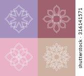 flourish logo template ornament ... | Shutterstock .eps vector #316141571