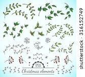 christmas vector floral... | Shutterstock .eps vector #316152749