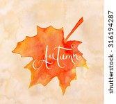 orange watercolor autumn maple... | Shutterstock . vector #316194287