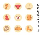 medical icons thin line set.... | Shutterstock .eps vector #316225835