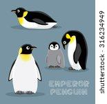 emperor penguin cartoon vector... | Shutterstock .eps vector #316234949