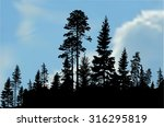 illustration with black forest... | Shutterstock .eps vector #316295819