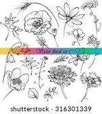 line drawings of wildflowers ...