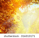 Blurred Nature Background With...