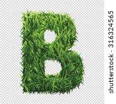 alphabet b of green grass. a... | Shutterstock .eps vector #316324565