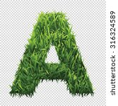 alphabet a of green grass. a... | Shutterstock .eps vector #316324589