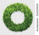 alphabet o of green grass. a... | Shutterstock .eps vector #316324625