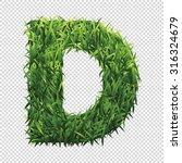 alphabet d of green grass. a... | Shutterstock .eps vector #316324679