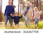 grandparents and grandchildren... | Shutterstock . vector #316367705