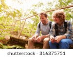 father and son sitting on a... | Shutterstock . vector #316375751