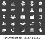 business icon set vector  on... | Shutterstock .eps vector #316411169