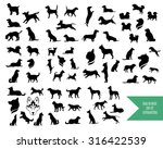 The Big Vector Set Of Dog...