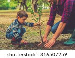 let me help you  little boy... | Shutterstock . vector #316507259