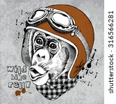 Monkey Portrait In A Retro...