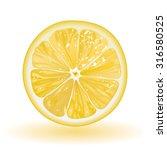 lemon | Shutterstock .eps vector #316580525