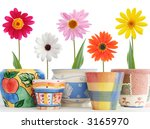 daisies in fun ceramic pots | Shutterstock . vector #3165970