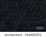 abstract  background with... | Shutterstock .eps vector #316605251