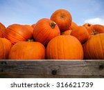 Giant Pumpkins On Blue Sky ...