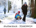 active healthy grandparents and ... | Shutterstock . vector #316634414