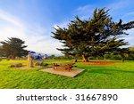 recreational park in apollo bay ... | Shutterstock . vector #31667890
