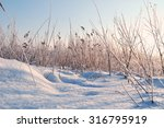 Winter Landscape With The Snow...