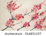 cherry blossoms on a tinted... | Shutterstock . vector #316851197