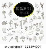 hand sketched a large... | Shutterstock .eps vector #316894004