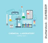 the chemical laboratory... | Shutterstock .eps vector #316988309