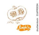 hand drawn sketch of pumpkin... | Shutterstock .eps vector #316990034