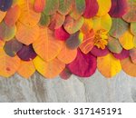colorful autumn leaves... | Shutterstock . vector #317145191