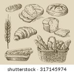 vector hand drawn food sketch... | Shutterstock .eps vector #317145974