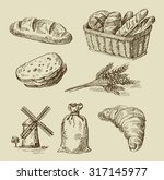 vector hand drawn food sketch... | Shutterstock .eps vector #317145977
