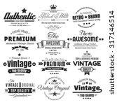 twelve vintage insignias or... | Shutterstock .eps vector #317146514