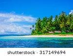 tropical island landscape ... | Shutterstock . vector #317149694