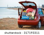 suitcases and bags in trunk of... | Shutterstock . vector #317193311