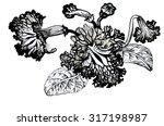 summer garden blooming flowers  ... | Shutterstock .eps vector #317198987