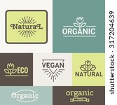 organic food logos  labels and... | Shutterstock .eps vector #317204639