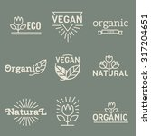 organic food logos  labels and... | Shutterstock .eps vector #317204651