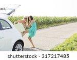 happy female friends pushing... | Shutterstock . vector #317217485