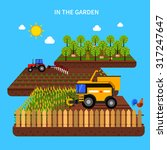 Agriculture Concept With...