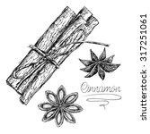 sketch cinnamon isolated on... | Shutterstock .eps vector #317251061