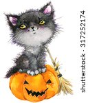 Halloween Black Cat Witch And...