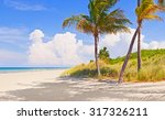 palm trees on a beautiful sunny ... | Shutterstock . vector #317326211