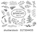 hand drawn branches collection. ... | Shutterstock .eps vector #317334455